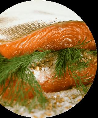 safa saumon mariné